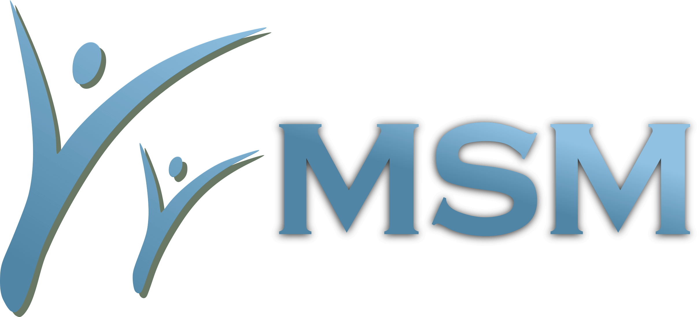 MSM mini logo 2
