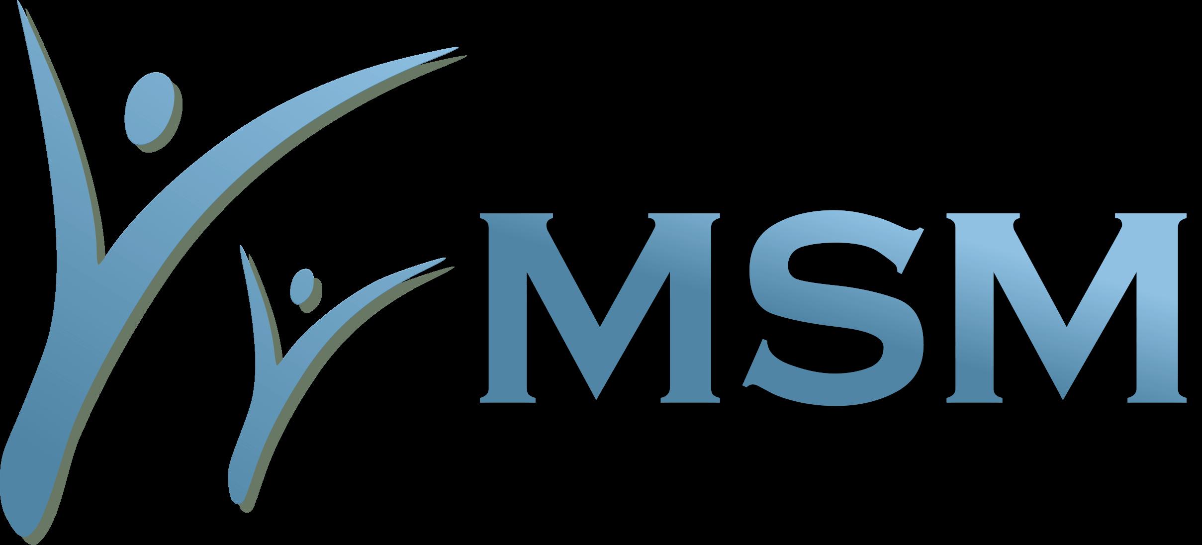 MSM mini logo 2